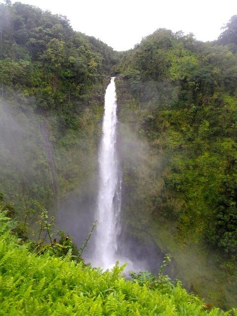 Waimea-Akaka Falls-thumb-480x640-2031